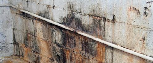 lekkage op muur in kelder